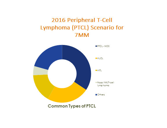 Peripheral T-Cell Lymphoma (PTCL) market was estimated at 204 Million in 2016